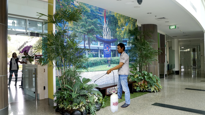 Perawatan Tanaman di Taman Lobby Utama