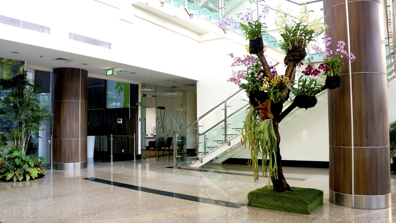 Rangkaian Anggrek di Pohon Buatan di Lobby Utama